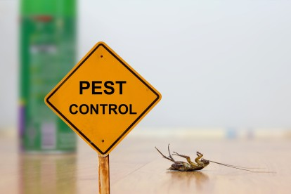 Pest Contol in Banstead, Woodmansterne, SM7. Call Now 020 8166 9746