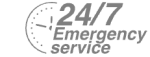 24/7 Emergency Service Pest Control in Banstead, Woodmansterne, SM7. Call Now! 020 8166 9746